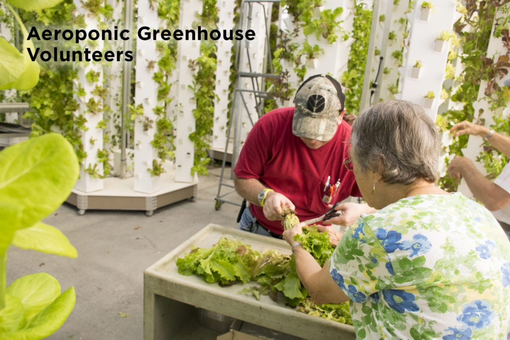 Aeroponic Greenhouse at Garden Spot Village